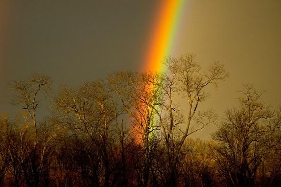 Красивое фото радуги в горах в поле